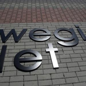 Litery na budynek reklamowe logo lakierowane z włókna szklanego