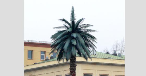Warszawska palma - włókno szklane w Warszawie