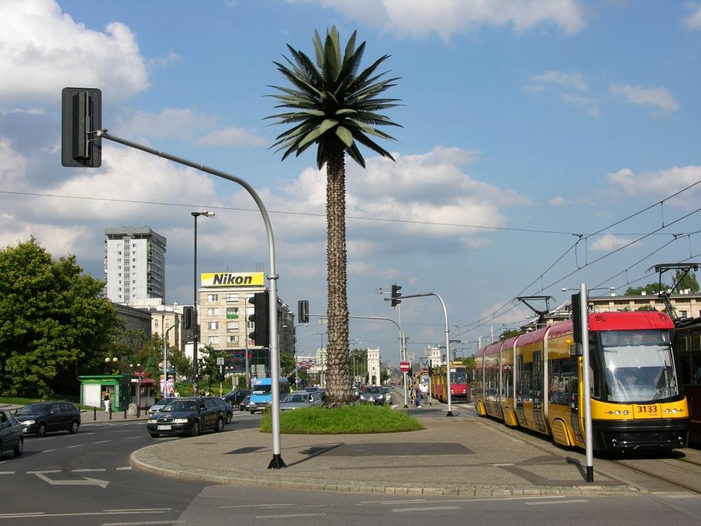 Warszawska palma - widok od mostu poniatowskiego
