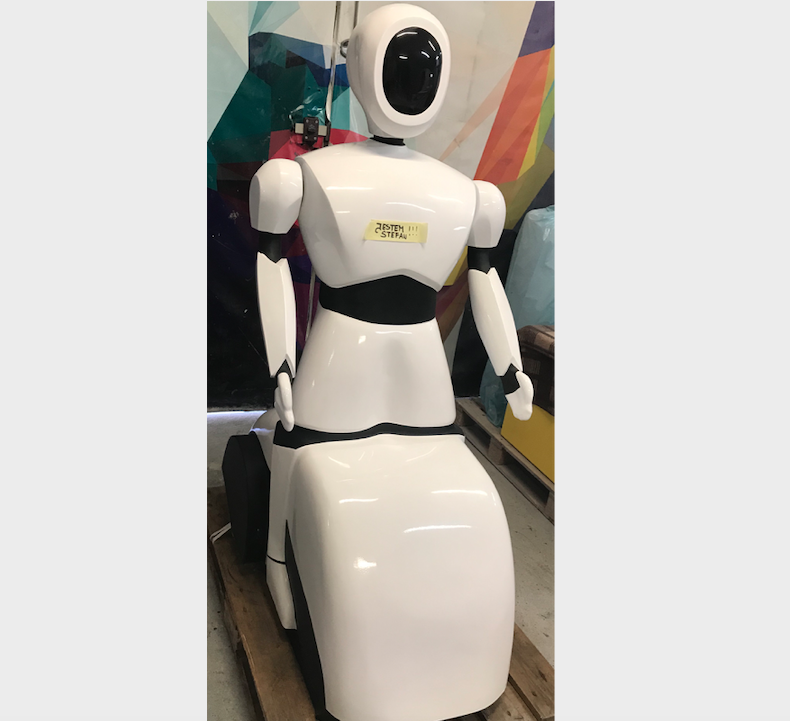 Polski Robot Humanoidalny